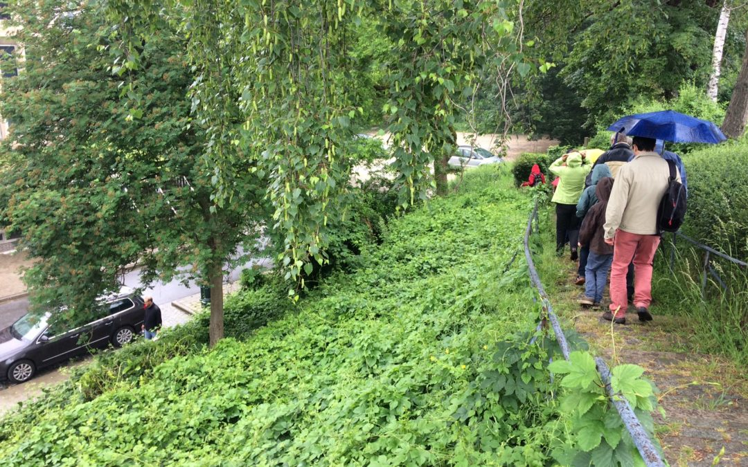 Forest travaille à la récupération des eaux pluviales
