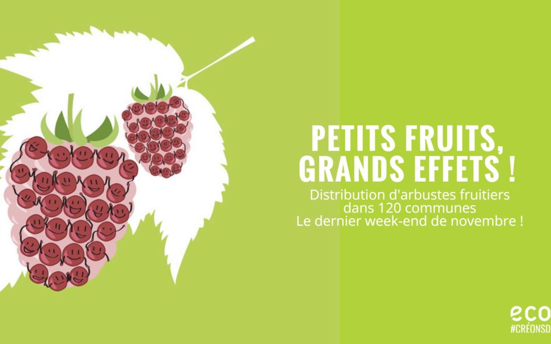 Petits fruits, grands effets – Distribution d'arbres à Forest le 26 novembre