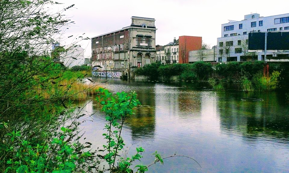 Projet JCX Immo (« Marais du Wiels »):Un projet durable et convivial est possible !