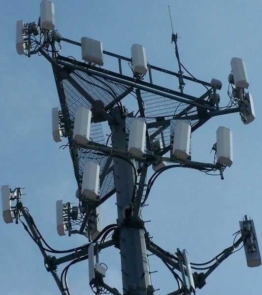 La Commune de Forest demande un moratoire pour l'octroi  des licences de la 5G